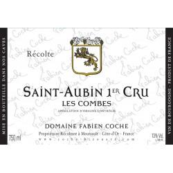 Saint-Aubin Les Combes 1er Cru Blanc 2016 - Domaine Fabien Coche