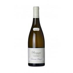 Bourgogne Blanc 2017 - Domaine Etienne Sauzet