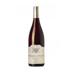 Bourgogne Cote d'Or Pinot Noir 2017 - Domaine Sylvain Bzikot