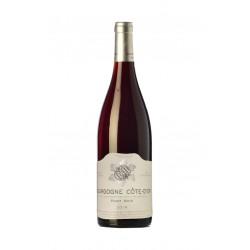 Bourgogne Cote d'Or Pinot Noir 2018 - Domaine Sylvain Bzikot
