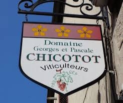 Domaine Georges et Pascale Chicotot