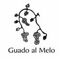 Az. Agr. Guado al Melo